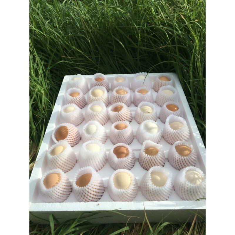 1 147 - Doğal, Gezen Tavuk Yumurtası - 30 adet