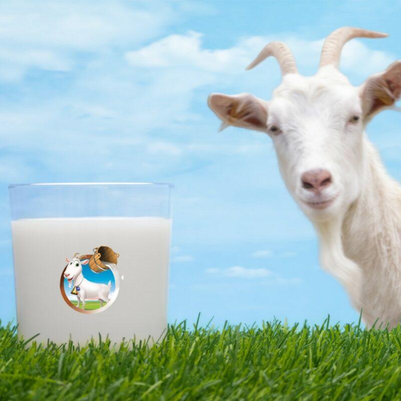 2 26 - Keçi Sütü (Tamamen Doğal, Yağı Alınmamış) - 3 lt