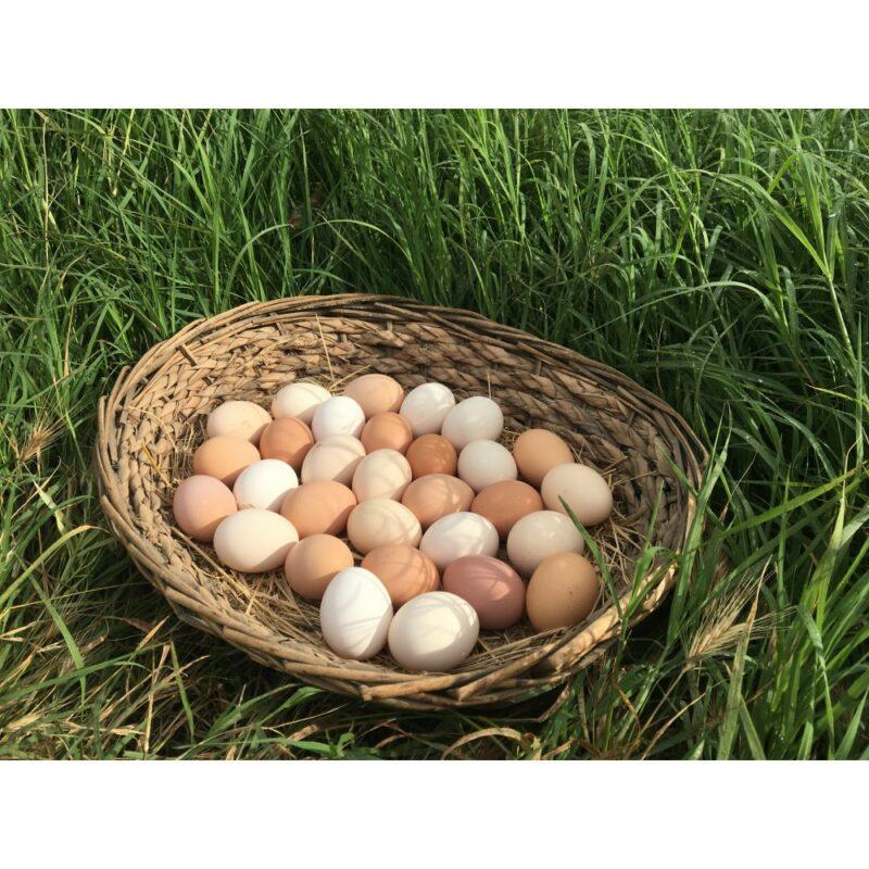 2 27 - Doğal, Gezen Tavuk Yumurtası - 30 adet