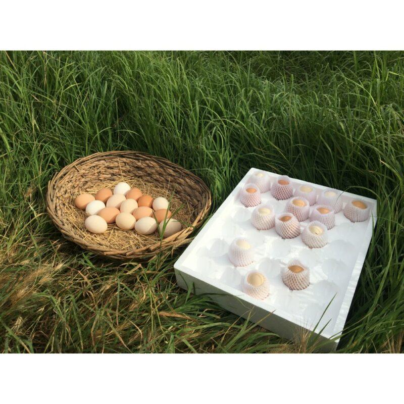 3 8 - Doğal, Gezen Tavuk Yumurtası - 30 adet